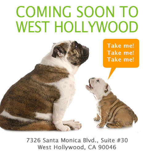 Coming Soon to West Hollywood