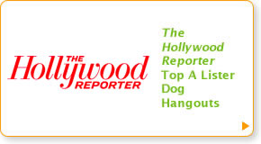 The Hollywood Reporter:  Top A Lister Dog Hangouts