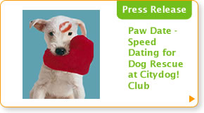 Paw Date - Speed Dating for Dog Rescue at Citydog! Club